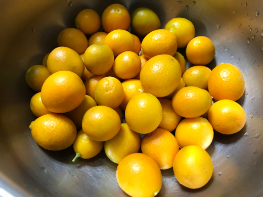 I\'ve harvested some crops of kumquat._c0128818_12431827.jpg