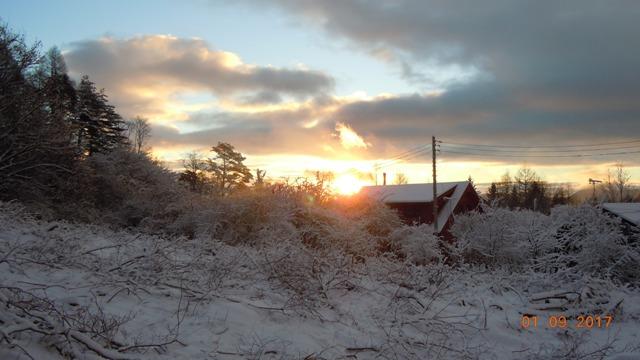 冬の朝_f0376118_21575947.jpg