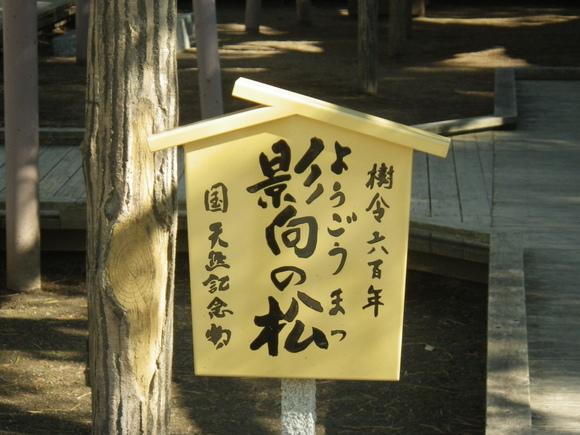 H29.1.10 関東へお出かけ_b0184721_1855389.jpg