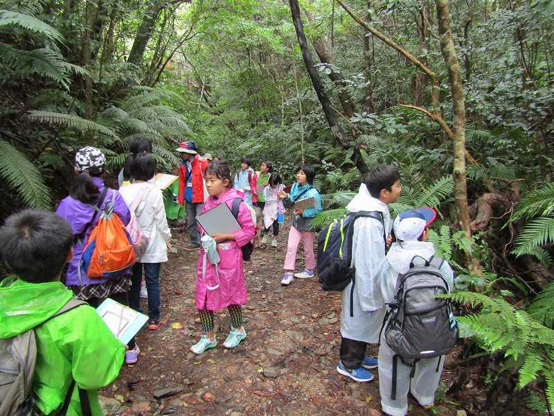 第10回沖縄県子ども環境サミット 子どもエコキャンプ_f0121321_1620830.jpg
