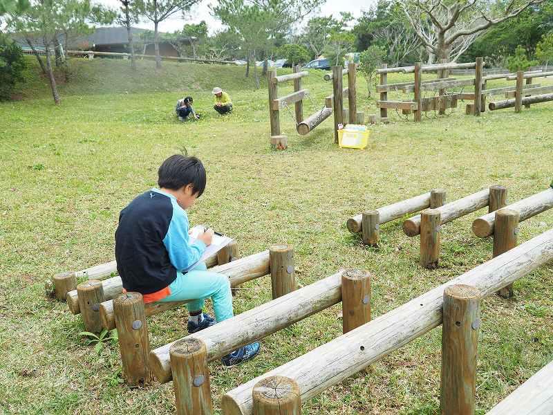 第10回沖縄県子ども環境サミット 子どもエコキャンプ_f0121321_16221142.jpg