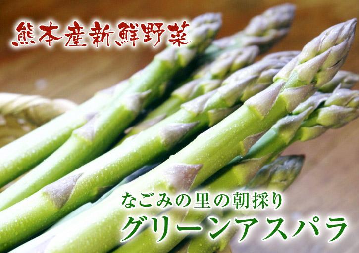 「なごみの里の朝採り『グリーンアスパラ』」 不要な葉っぱや種を焼き払って元気なアスパラを育てます!_a0254656_1734475.jpg