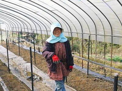 「なごみの里の朝採り『グリーンアスパラ』」 不要な葉っぱや種を焼き払って元気なアスパラを育てます!_a0254656_18314025.jpg