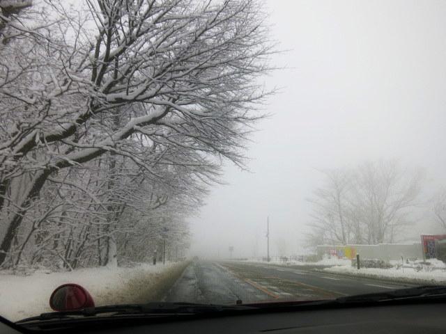 ようやく冬らしい景色に♪_f0236260_01450539.jpg