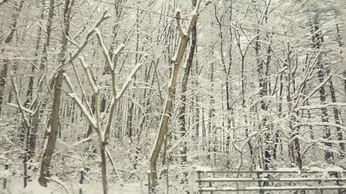 ようやく冬らしい景色に♪_f0236260_01482849.jpg