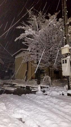 雪国!!_a0128408_1701044.jpg