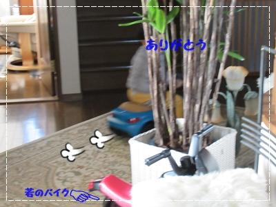 b0254145_14573069.jpg