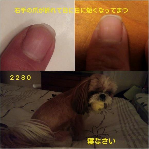 b0306158_13075941.jpg