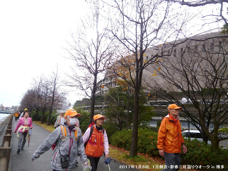 2017年1月例会 合同三社詣りウオーク in 博多_b0220064_1441290.jpg