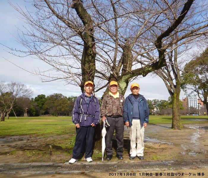 2017年1月例会 合同三社詣りウオーク in 博多_b0220064_8325583.jpg