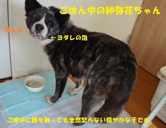 f0121712_14010969.jpg