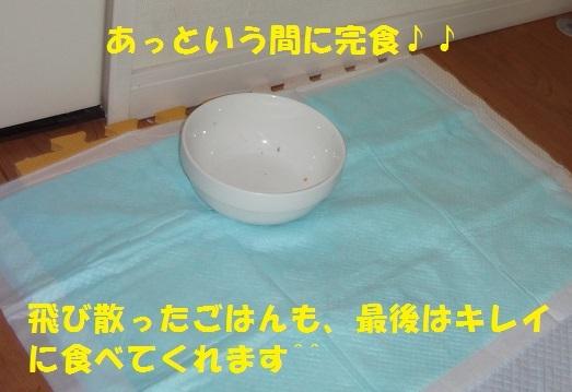 f0121712_14012039.jpg