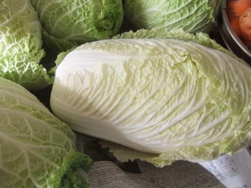 大根の福神漬け..白菜の塩漬け_b0137932_19494807.jpg