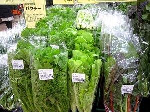 本日のお野菜♪_c0141652_14065815.jpg