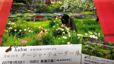 三越新春展2017 「ターシャ・テューダー展」_c0190960_721419.jpg