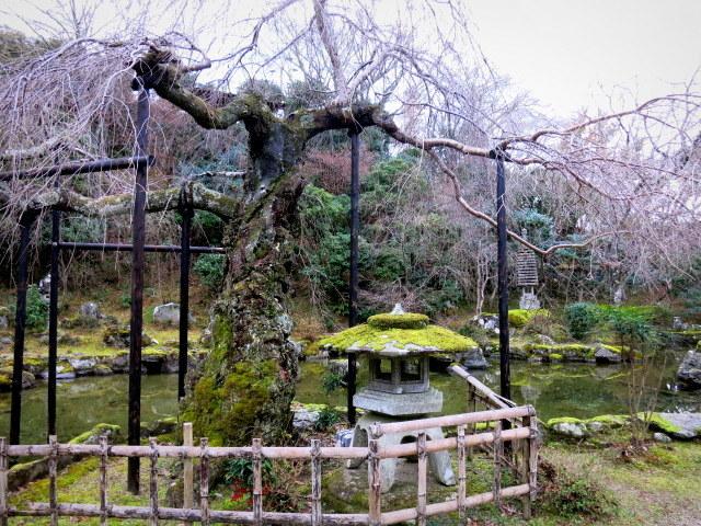 吉野山で年越し*竹林院群芳園 [旅行・お出かけ部門]_f0236260_17140219.jpg
