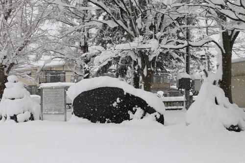 ~青春の詩碑~ 積雪の比較_c0075701_5365947.jpg