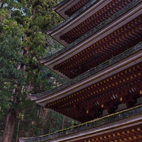室生寺と雨の伊勢_f0099102_1133148.jpg