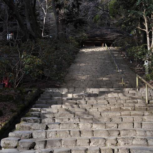 室生寺と雨の伊勢_f0099102_11351751.jpg
