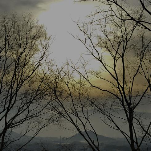 室生寺と雨の伊勢_f0099102_11363818.jpg