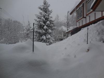 1月13日金曜  雪  -2度_f0210811_9302757.jpg