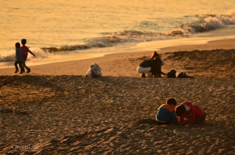 冬の海散歩_f0321522_11115882.jpg