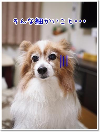 d0013149_00293695.jpg