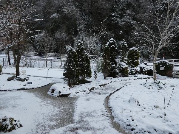 雪景色_e0365880_19521019.jpg