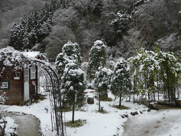雪景色_e0365880_20131977.jpg