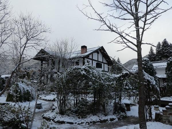 雪景色_e0365880_20162953.jpg