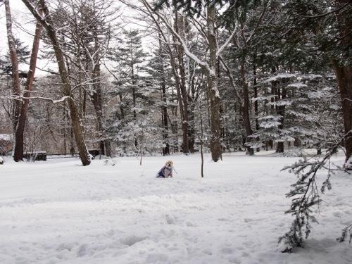 雪を少し楽しみました_e0192217_13003834.jpg