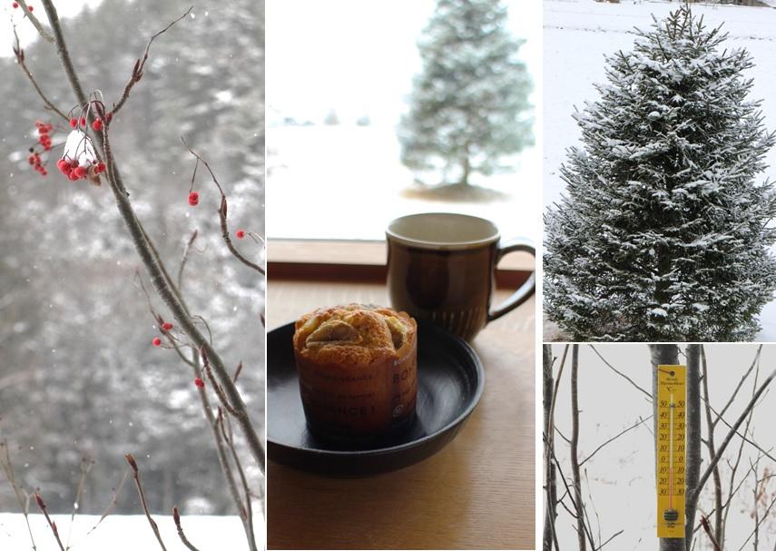 雪の日のスイーツは_a0212730_20503871.jpg