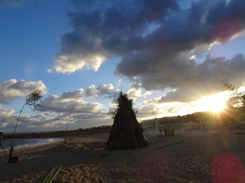寒風の中「とんど」は燃えた!・・・せんなん里海公園  by  (TATE-misaki)_c0108460_21211646.jpg