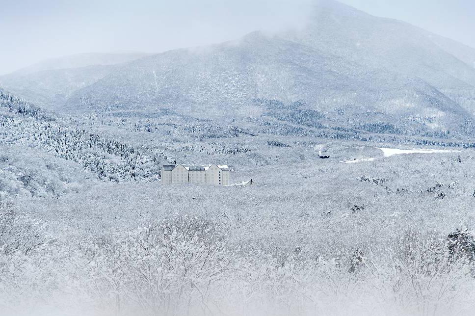 雪のラフォーレ蔵王リゾート_e0271864_683259.jpg