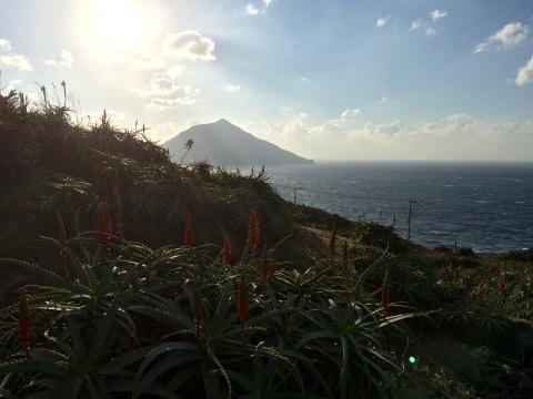 お正月頃の島の様子_e0097770_16291183.jpg