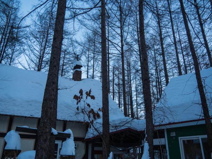 極寒の夕暮れ時・・3日連続でマイナス20℃越え!_f0276498_23520225.jpg