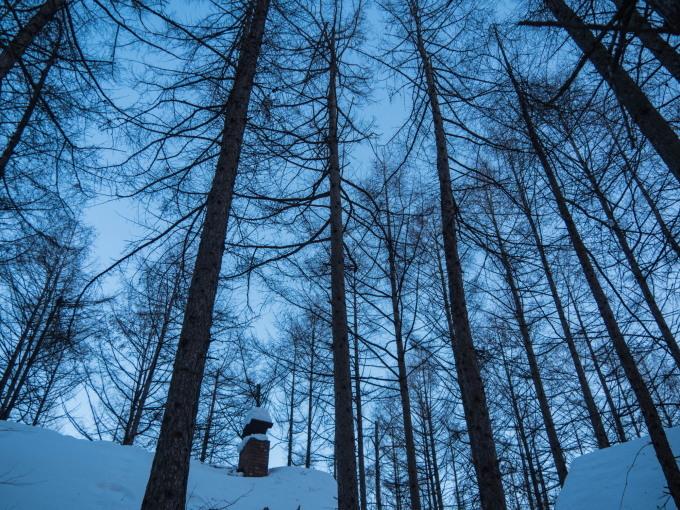 極寒の夕暮れ時・・3日連続でマイナス20℃越え!_f0276498_23524804.jpg