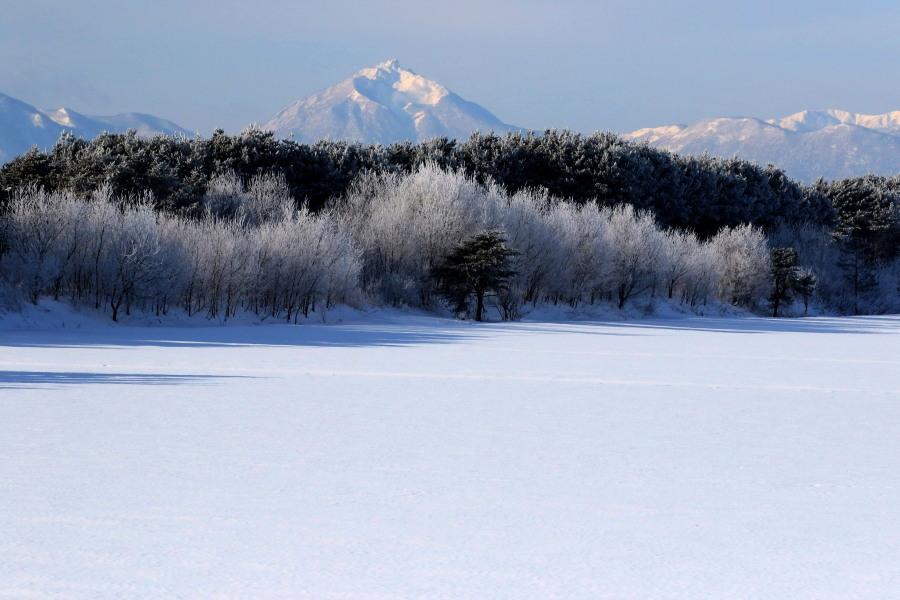 厳寒の朝 長都沼付近_c0360399_17451071.jpg