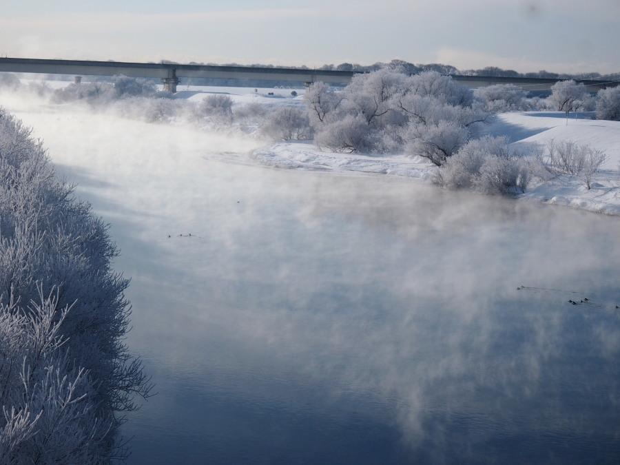 厳寒の朝 長都沼付近_c0360399_17460346.jpg