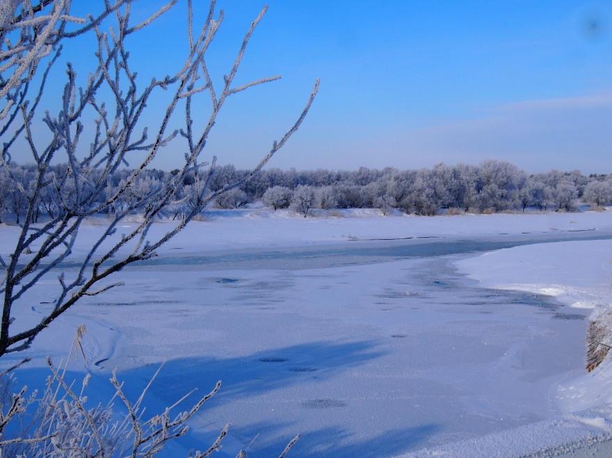 厳寒の朝 長都沼付近_c0360399_17581278.jpg