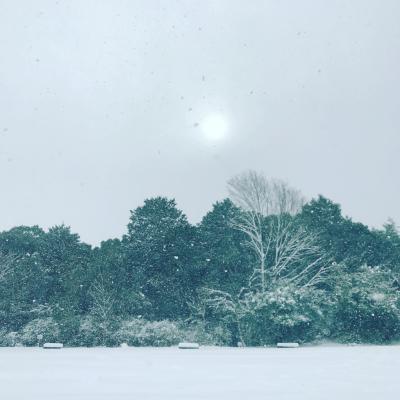 雪国_a0167912_12312178.jpg