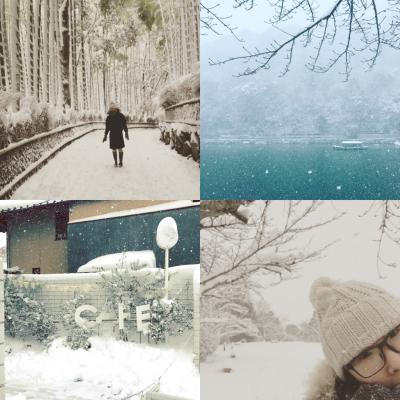 雪国_a0167912_12352776.jpg