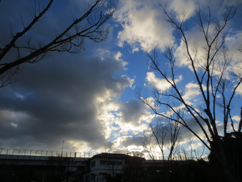 ■週替わりの夕暮れ[1/15&9]_d0190217_22142091.jpg