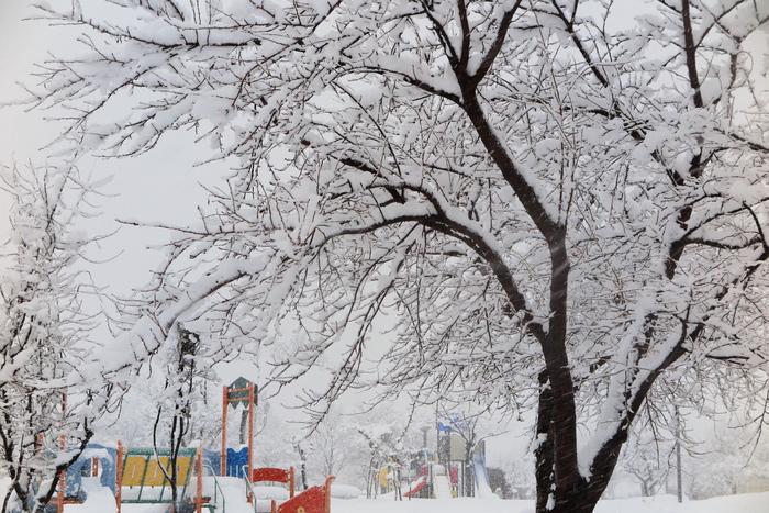 雪が降る_e0169421_12295930.jpg