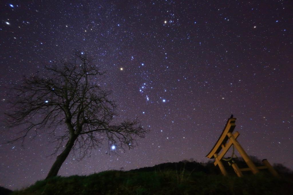 星の奇麗な夜に_a0294534_2047865.jpg