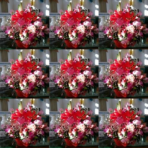 d0345853_06330779.jpg