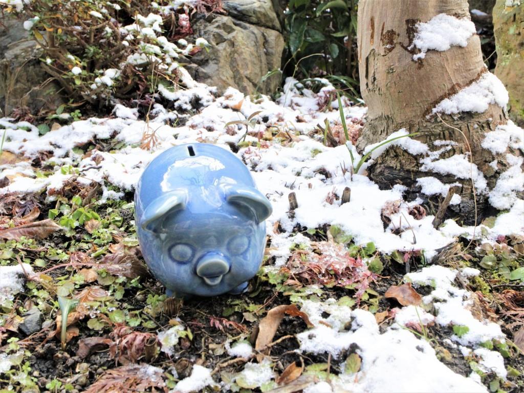 旅する豚さん♡ 2_f0220354_16555032.jpg