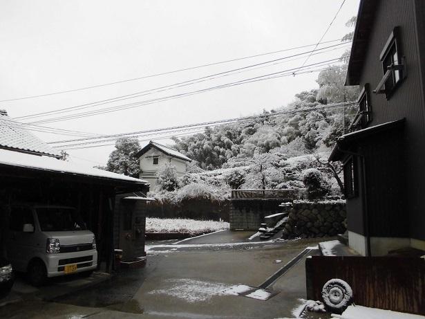雪ですね_e0010955_21123625.jpg