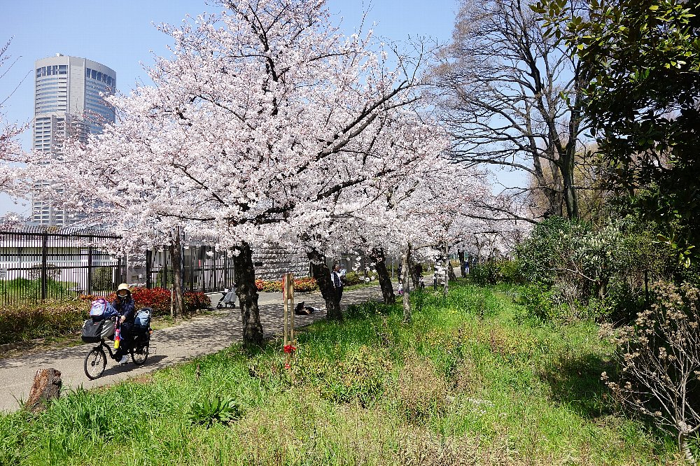 網島町の洋風長屋_c0112559_825502.jpg