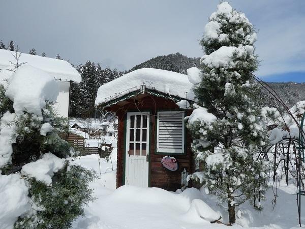 いつもの冬景色_e0365880_22524676.jpg